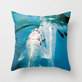 Silver Koi Fish in Blue Grey Pond Nature Photography Throw Pillow