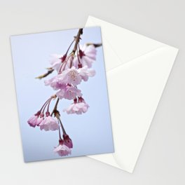 pink ladies. Stationery Cards