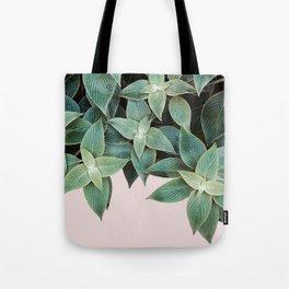 #leaf #wall #pink Tote Bag