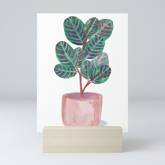 Calathea Peacock Plant Watercolor Mini Art Print