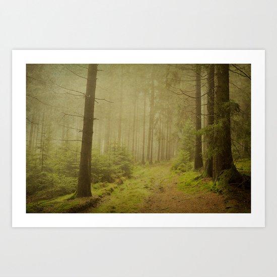december woods Art Print