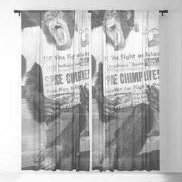 Space Chimp Lives - NASA Moon Flight black and white photograph Sheer Curtain