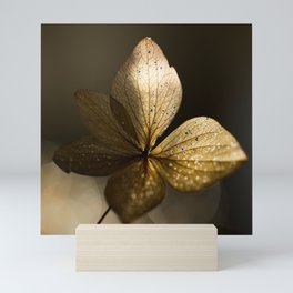 Autumn Scene - Dry Petals with Golden Sunset Light #decor #society6 #buyart Mini Art Print