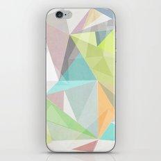 Nordic Combination 11 iPhone & iPod Skin