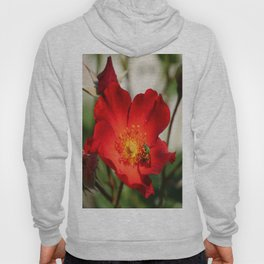 Green On Red Hoody
