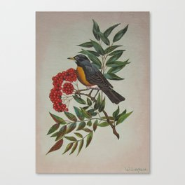 Still Life Bird Canvas Print