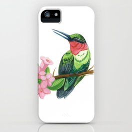 Summer Hummingbird iPhone Case