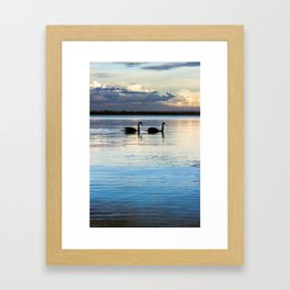 Matilda Bay Swans Framed Art Print