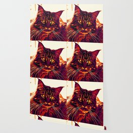 squinting maine coon cat vector art late sunset Wallpaper