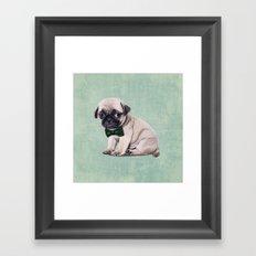 Angry Pug Framed Art Print