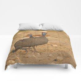 Birds of Namibia 4 Comforters