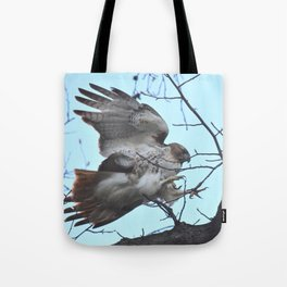 Hawk attacking tree 33 Tote Bag