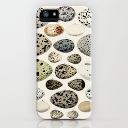 Oken Eggs (1843) by Lorenz Oken iPhone Case