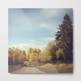 Fall Colors on a Country Road Metal Print