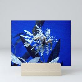 Sea horse, Sea dragons  Mini Art Print