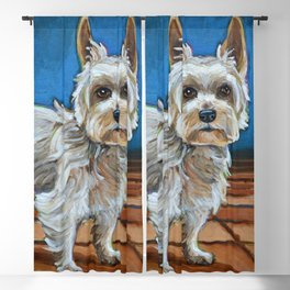 Cute Yorkshire Terrier Blackout Curtain