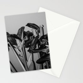 Dying Tulip Stationery Cards