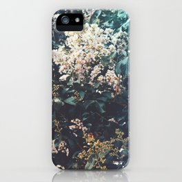 Amongst the Myrtle Tree iPhone Case