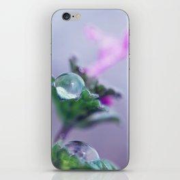 Look Up iPhone Skin