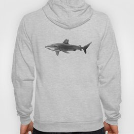 Oceanic Whitetip Shark 2 Hoody