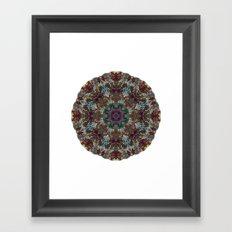 Hallucination Mandala 4 Framed Art Print