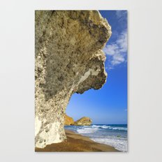 Volcanic beach Canvas Print