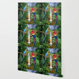 Macaw Tropical Parrots Wallpaper