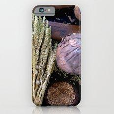 healthy food iPhone 6s Slim Case