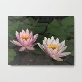 Our Refections Metal Print