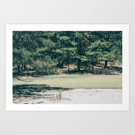 Pine Barrens Art Print