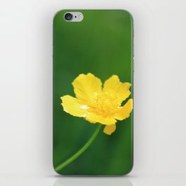 Swamp Buttercup Wildflower iPhone Skin