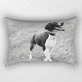 Fairo Rectangular Pillow