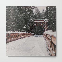 Nisqually River Suspension Bridge Metal Print