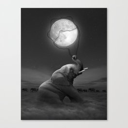 Bringing Light to the Darkness Canvas Print