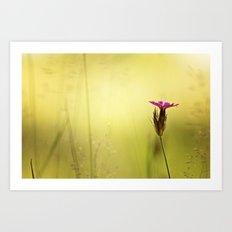 Wild Flower Art Print