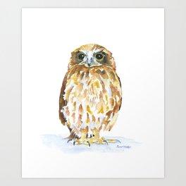 Burrowing Owl Watercolor Art Print