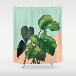 Monstera on mint and pink Shower Curtain