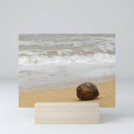 Coconut on the Beach Mini Art Print