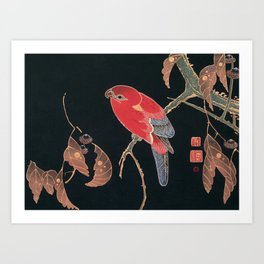 Red Parrot on the Branch of a Tree by Ito Jakuchu, 1900 Art Print