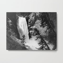 Lower Falls, Uncle Toms Point, Yellowstone National Park, Wyoming Metal Print
