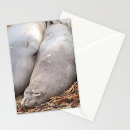 Sleeping Seals Stationery Cards