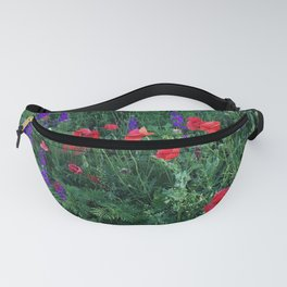 Good buy my Summer Fanny Pack