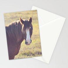 Chesnut Horse Stationery Cards