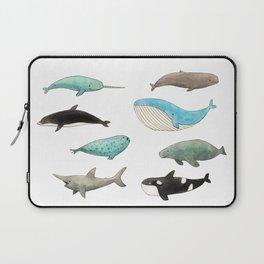 Marine animals Laptop Sleeve