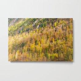 Autumn Trees in Berchtesgaden National Park, Germany Metal Print