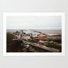 Pacific Coast Art Print