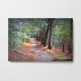 Secret Pathway Metal Print