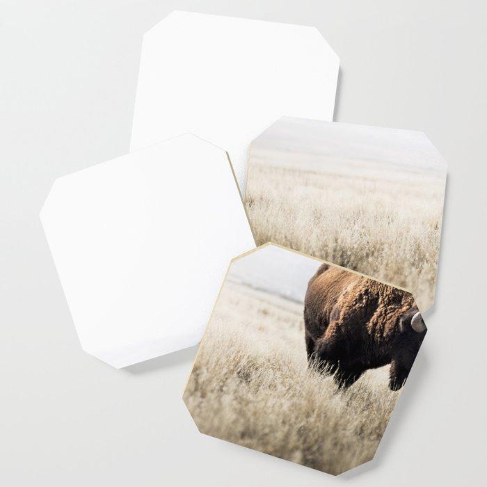 Bison stance Coaster