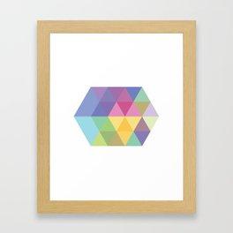 Fig. 015 Colorful Hexagon Framed Art Print