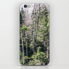Old Nye Ski Trail iPhone Skin